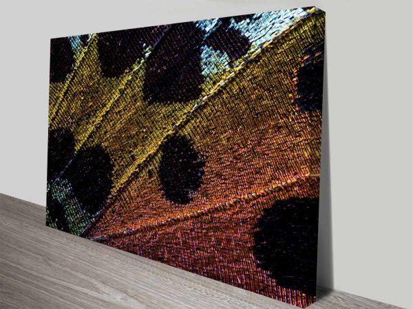 beauty after metamorphosis custom canvas wall art