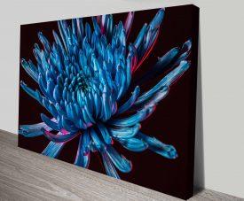 blue spider mum canvas print wall art