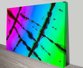 compact disc future canvas art print