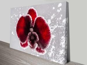 crystal orchid custom photo wall art