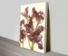 tulip loveliness elena kulikova artwork