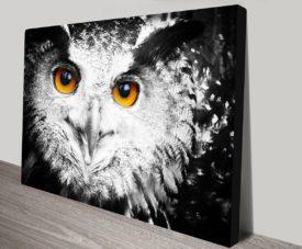 Owl Wall Art on Canvas Print
