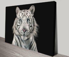 White Tiger Canvas Art Unique Gift Ideas AU