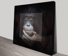 Orangutan in Contemplation Artwork on Canvas Gallery Online