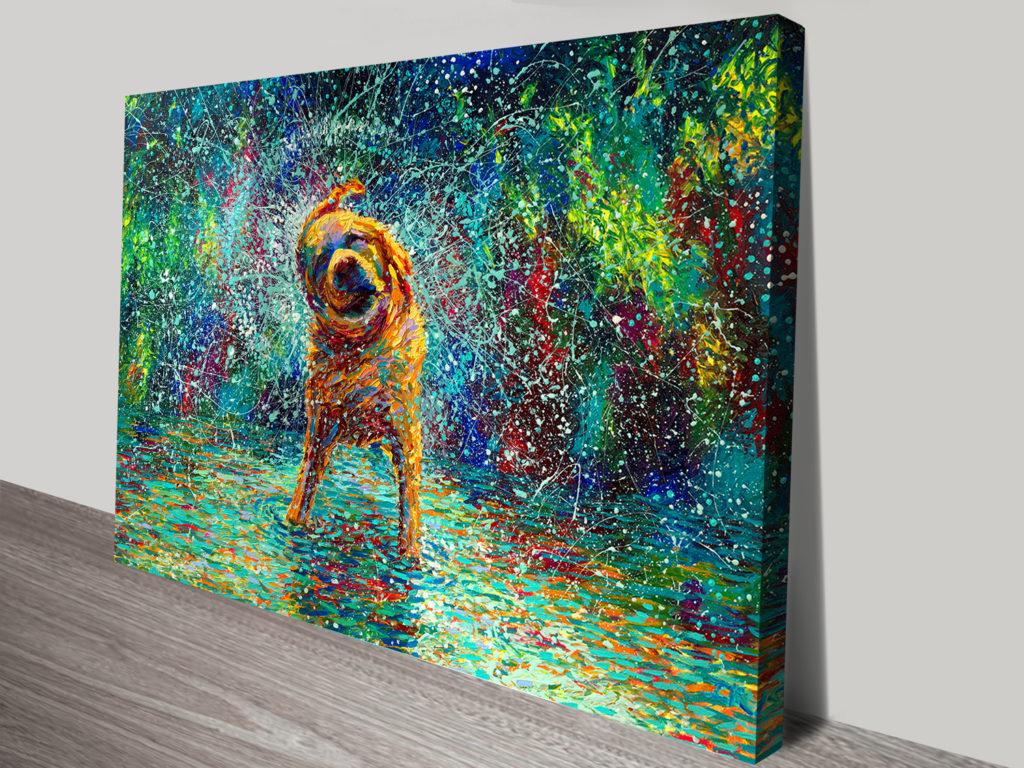 Shakin Jake Iris Scott Dog Canvas Print Online Gallery