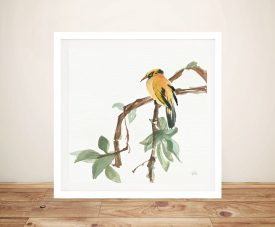 Black Napped Oriole Wall Art Canvas Print
