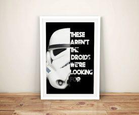 Star-Wars-Storm-Trooper-Framed-Wall-Art
