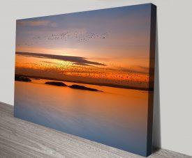 Birds at Sunset Framed Wall Print