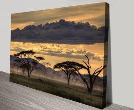Good Evening Tanzania Framed Print
