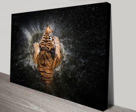 Tiger Splash Canvas Artwork