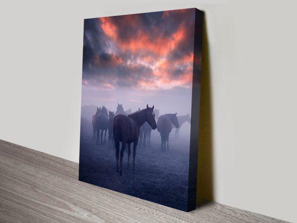 Wild Horses in Mist Canvas Art Print