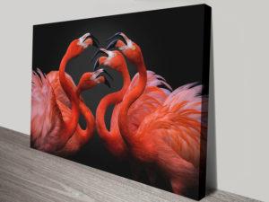 Flamingos Photo Canvas Artwork Prints