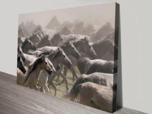 Wild Horses Herd Canvas Artwork Prints