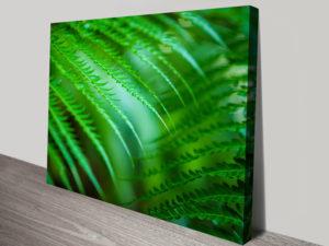 Deep Verdant Leaf Noel Buttler Canvas Art