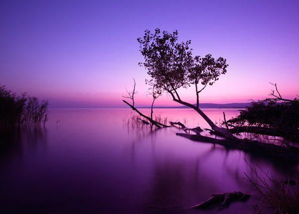 Lake Sunrise Photography Art Print