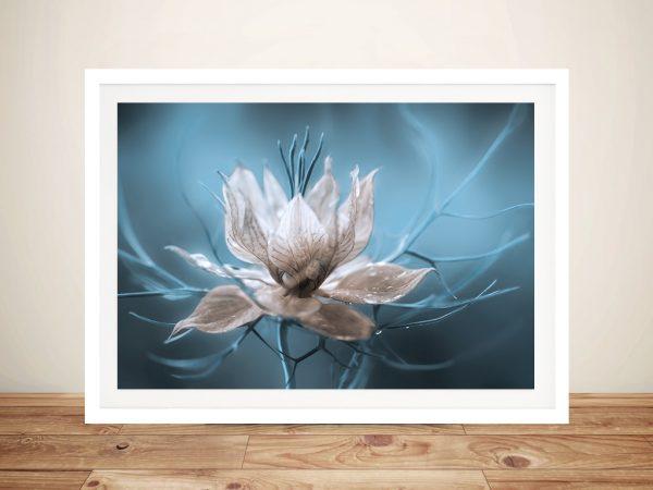Nigella Flower Art Print Picture on Canvas