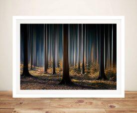 Tall Trees Framed Wall Art Print