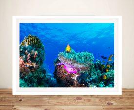 Underwater Splendour Coral Reef Photo on Canvas