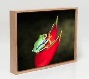 Floating Frame Artworks