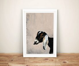 Billy Goat by Patsy Ducklow Paint To Print To Canvas