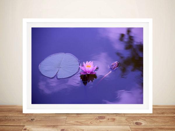 Purple Lotus Canvas Art Prints