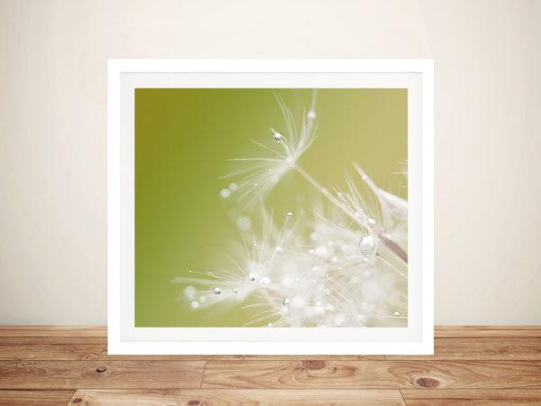 Green - Hilde Ghesquiere Photo Canvas Prints
