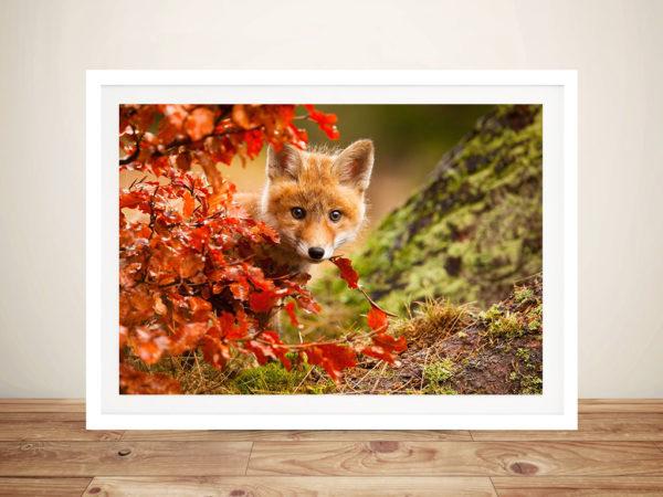 Fox - Robert Adamec Cheap Printing Online