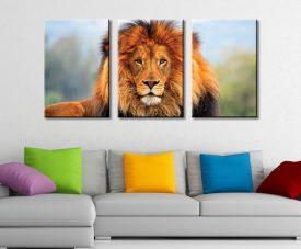 King of the Plains 3 Piece Canvas Set Three Piece Artwork