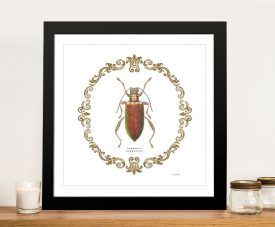 Adorning Coleoptera Vl - James Wiens Wall Art Online