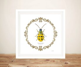 Adorning Coleoptera Vll - James Wiens Cheap Canvas Prints