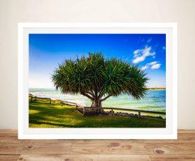 Caloundra Pandanus Australian Canvas Art