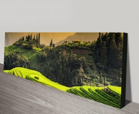 Rice Terraces at Sunset Canvas Wall Art