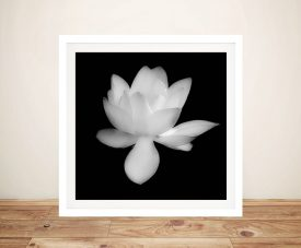 Canvas Print Of A Lotus Flower by Noel Buttler