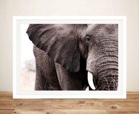Elephants Tear Framed Wall Art