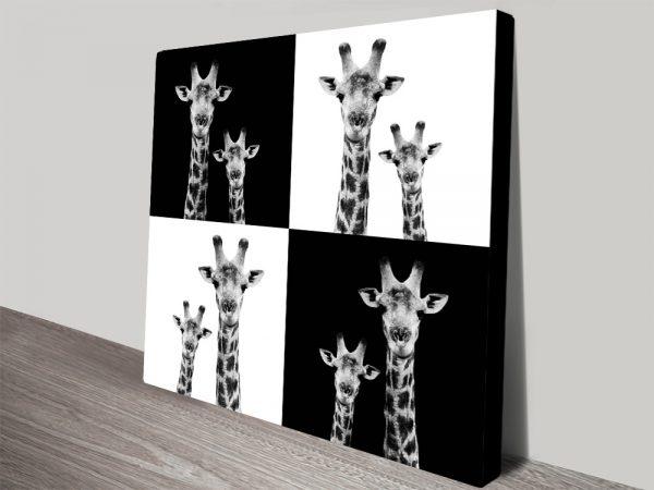 Two Giraffes by Philippe Hugonnard Wall Art AU