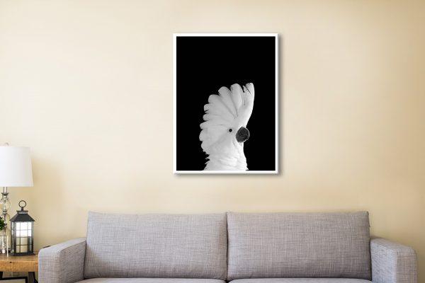 Buy Cheap White Cockatoo Wall Art Online
