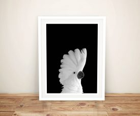 Buy a Framed Print of a White Cockatoo