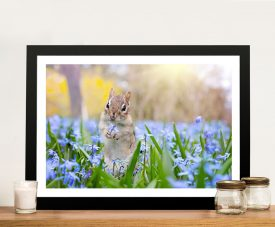 Buy Squirrel in Blooms Beautiful Wildlife Print