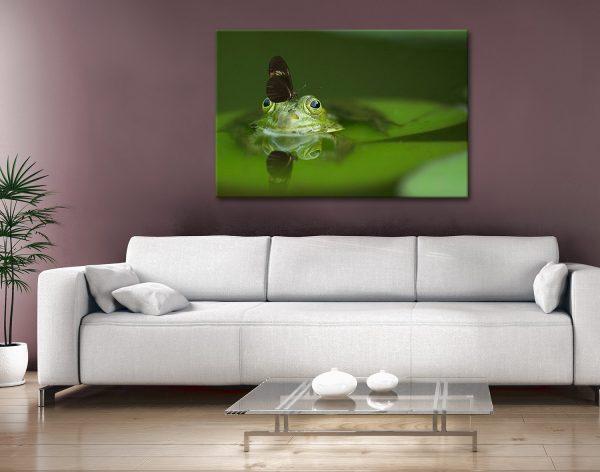 Buy Frog Wildlife Wall Art Cheap Gift Ideas AU