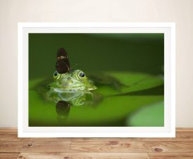 Buy Free Ride Frog & Butterfly Framed Art
