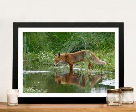 Fox in the Grass Framed Canvas Wildlife Artwork