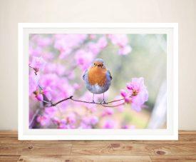 Robin in Blooms Buy Stunning Wildlife Wall Art