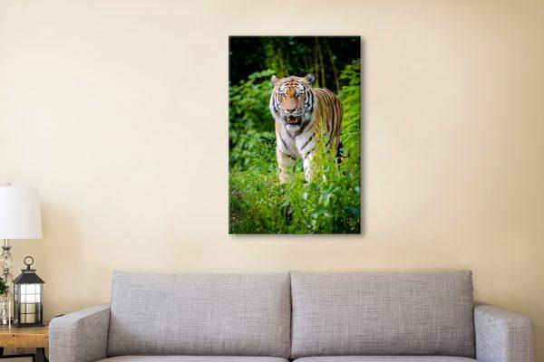 Buy Tiger Canvas Wall Art Cheap Online AU