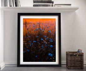 Buy Blue Flower Sunset Framed Canvas Wall Art