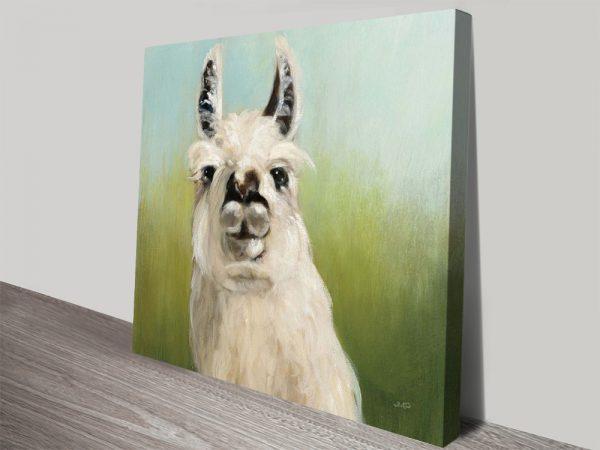 Buy Affordable Llama Wall Art Online Australia