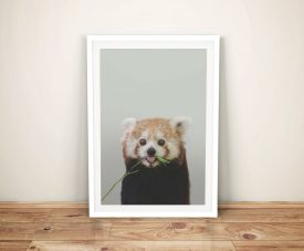 Buy a Cheeky Red Panda Ready to Hang Artwork