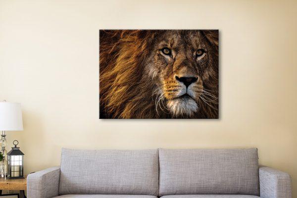 Buy Striking Wildlife Wall Art Cheap Online