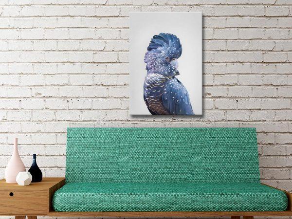 Buy Framed Animal Photography Prints Gift Ideas AU