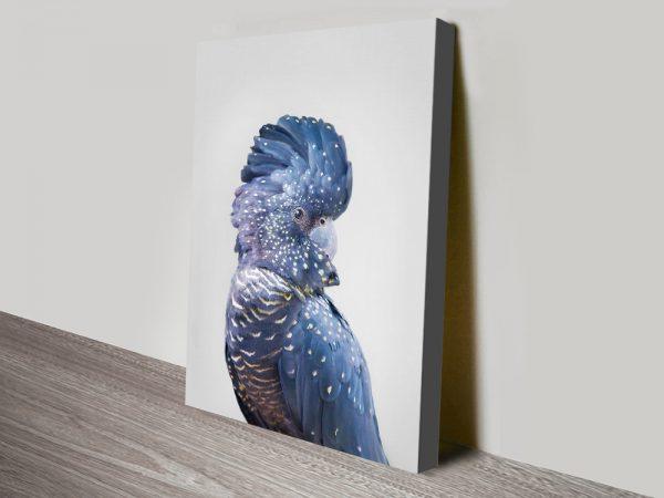 Buy Stunning Australian Wildlife Canvas Prints Online