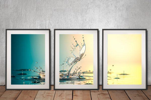 Buy Water Butterfly Wall Art Great Gift Ideas AU